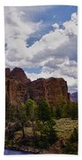 Big Horn National Forest Beach Towel