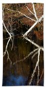 Birch Reflections Beach Towel