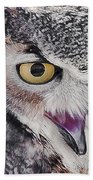 Bird 4 Beach Towel