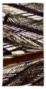 Bird Feather Beach Towel