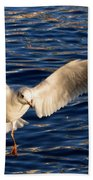 Bird Flying Beach Towel