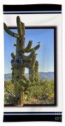 Bird On Cactus Beach Towel