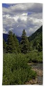 Bird Over Vail 1 Beach Towel