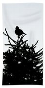 Bird Silhouette  Beach Towel