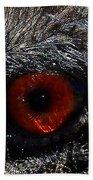 Bird's Eye Beach Sheet