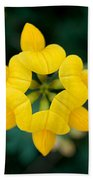 Bird's Foot Trefoil Beach Towel