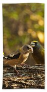 Birds Of Yellow Beach Towel