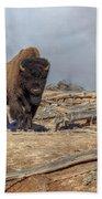 Bison And Geyser Beach Towel