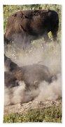 Bison Dust Bath Beach Towel