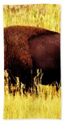 Bison In Field Beach Towel
