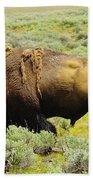 Bison Beach Towel