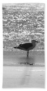 Black And White Gull Beach Towel