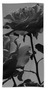 Black And White Roses Beach Towel