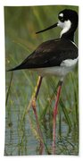 Black And White Stilt Beach Towel