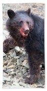 Black Bear Bloodied Lunch Beach Towel