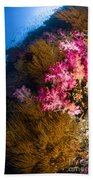 Black Coral And Soft Coral Seascape Beach Towel