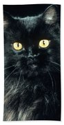 Black Persian Cat Beach Towel
