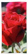 Black Rose Red Beach Towel