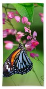 Black Veined Tiger Butterfly Beach Towel