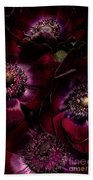 Blood Red Anemones Beach Towel