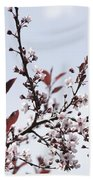 Blossoms In Time Beach Towel