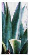 Blue Agave Beach Towel