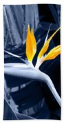 Blue Bird Of Paradise Beach Towel