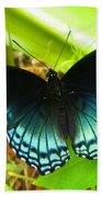 Blue Butterfly I Beach Towel