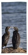 Blue Eyes Kissing Beach Towel