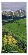 Blue Grouse Pass, Willmore Wilderness Beach Towel