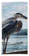 Blue Heron 1 Beach Towel