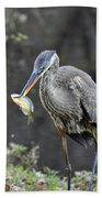 Blue Heron With Fish Beach Towel