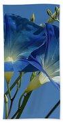 Blue Morning Beach Towel