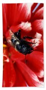 Blue Orchard Bee Beach Towel