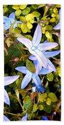 Blue Star Flowers Beach Towel