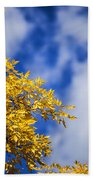 Blue White And Gold Beach Towel