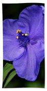 Blue Wildflower 6 Beach Towel