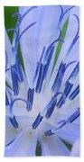 Blue Wildflower Beach Towel