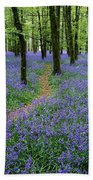 Bluebell Wood, Near Boyle, Co Beach Towel