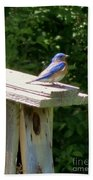 Bluebirds Make Me Happy Beach Towel
