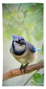 Bluejay In A Tree Beach Towel