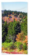 Blueridge Parkway View Near Mm 423 Beach Towel