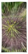 Bottle Brush By Nature Beach Towel