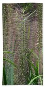 Bottle Brush Grass Beach Towel