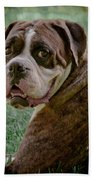 Boxer Smiles Beach Towel