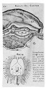 Brain And Pineal Gland Beach Towel