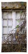 Branchy Window Beach Sheet