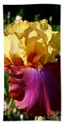 Bright Iris Beach Towel