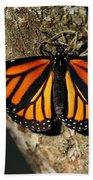 Bright Orange Monarch Butterfly Beach Towel
