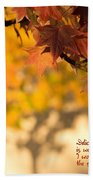 Brilliant Autumn Color Beach Towel
